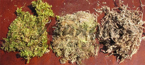Bag of Sphagnum Moss