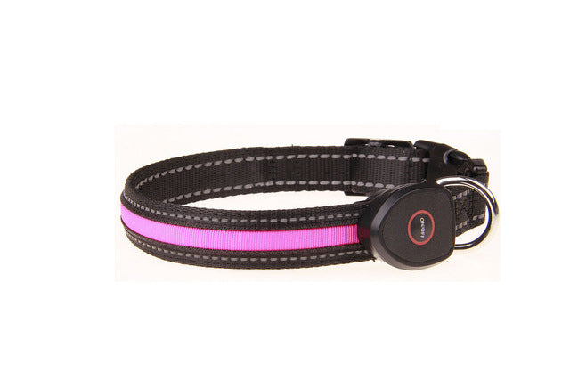 LED Dog Or Cat Collar USB Rechargeable And  Adjustable - thehipsterinyou