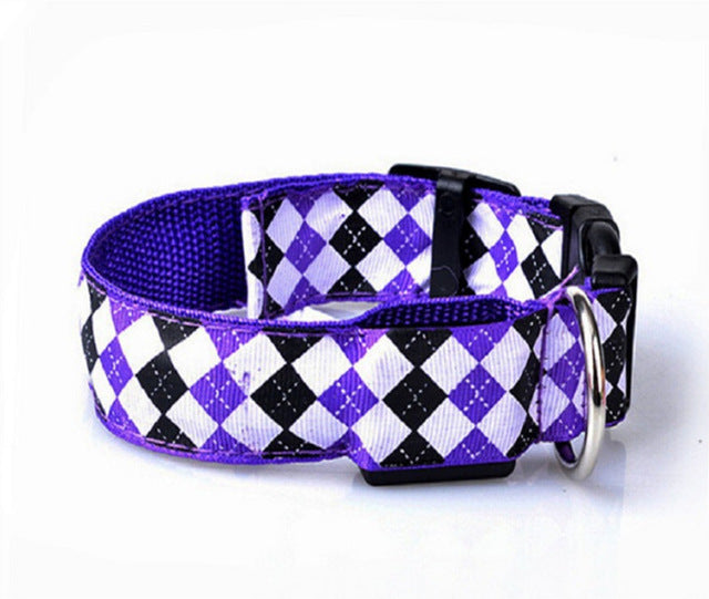 LED Nylon Pet Dog Collar Big Small Medium-Sized Dog - thehipsterinyou