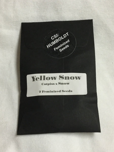 Yellow Snow