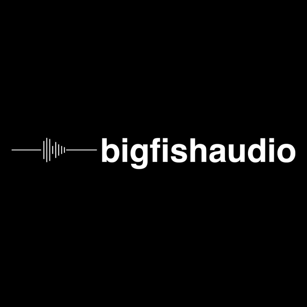 Datacode teams up with industry powerhouse Big Fish Audio!
