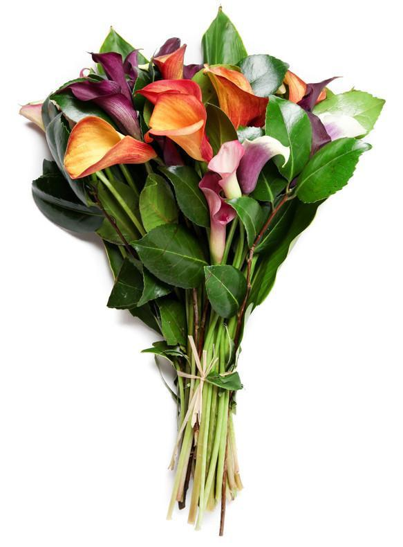 Cool Elegance Calla Lily Bouquet Yorkville S Usa