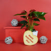 Valentine's Day Anthurium Gift