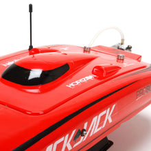 Blackjack 24-inch Catamaran BL: RTR
