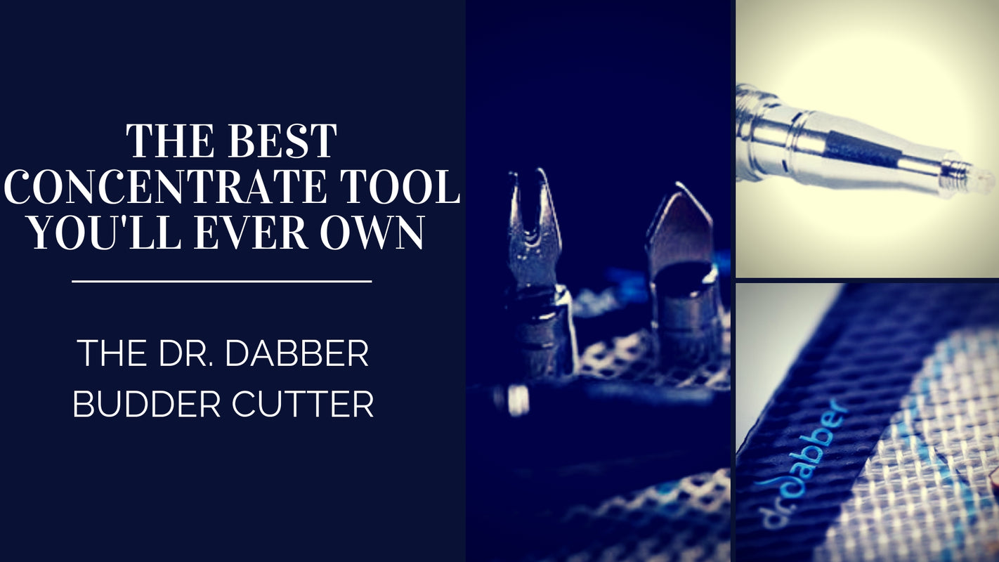 Is Dr. Dabber Budder Cutter the Best Concentrate Tool?