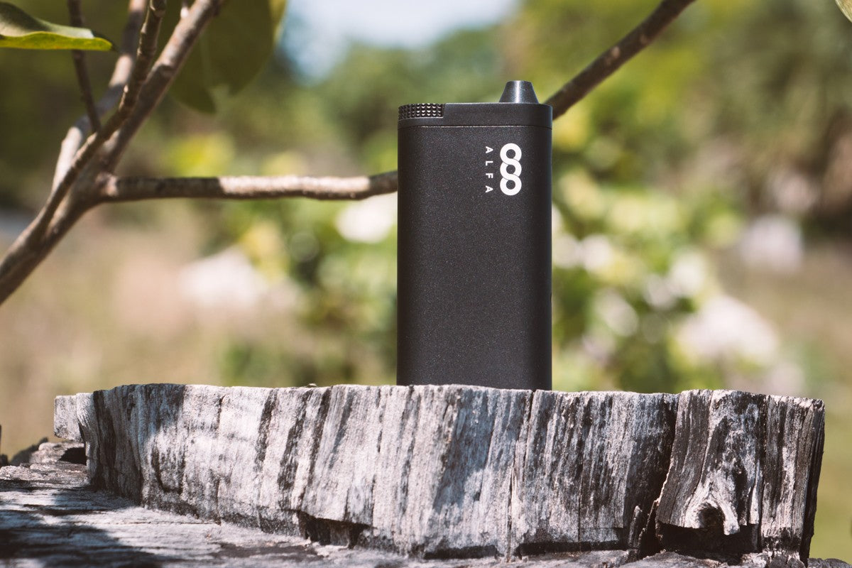 Video: Get to Know the Alfa Vaporizer