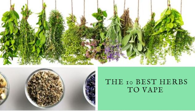 The 10 Best Herbs To Vape