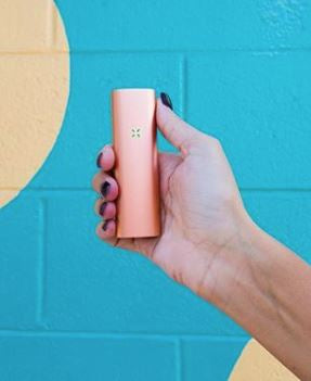 Rose Gold PAX 3