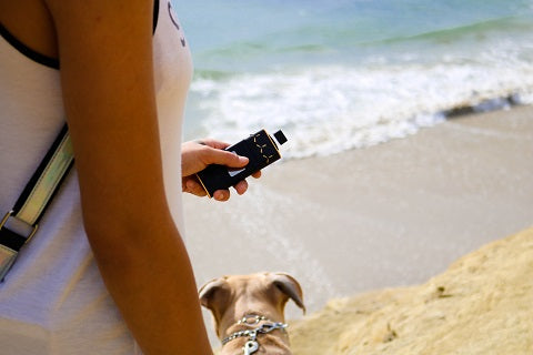 AirVape X vaporizer being used on the beach