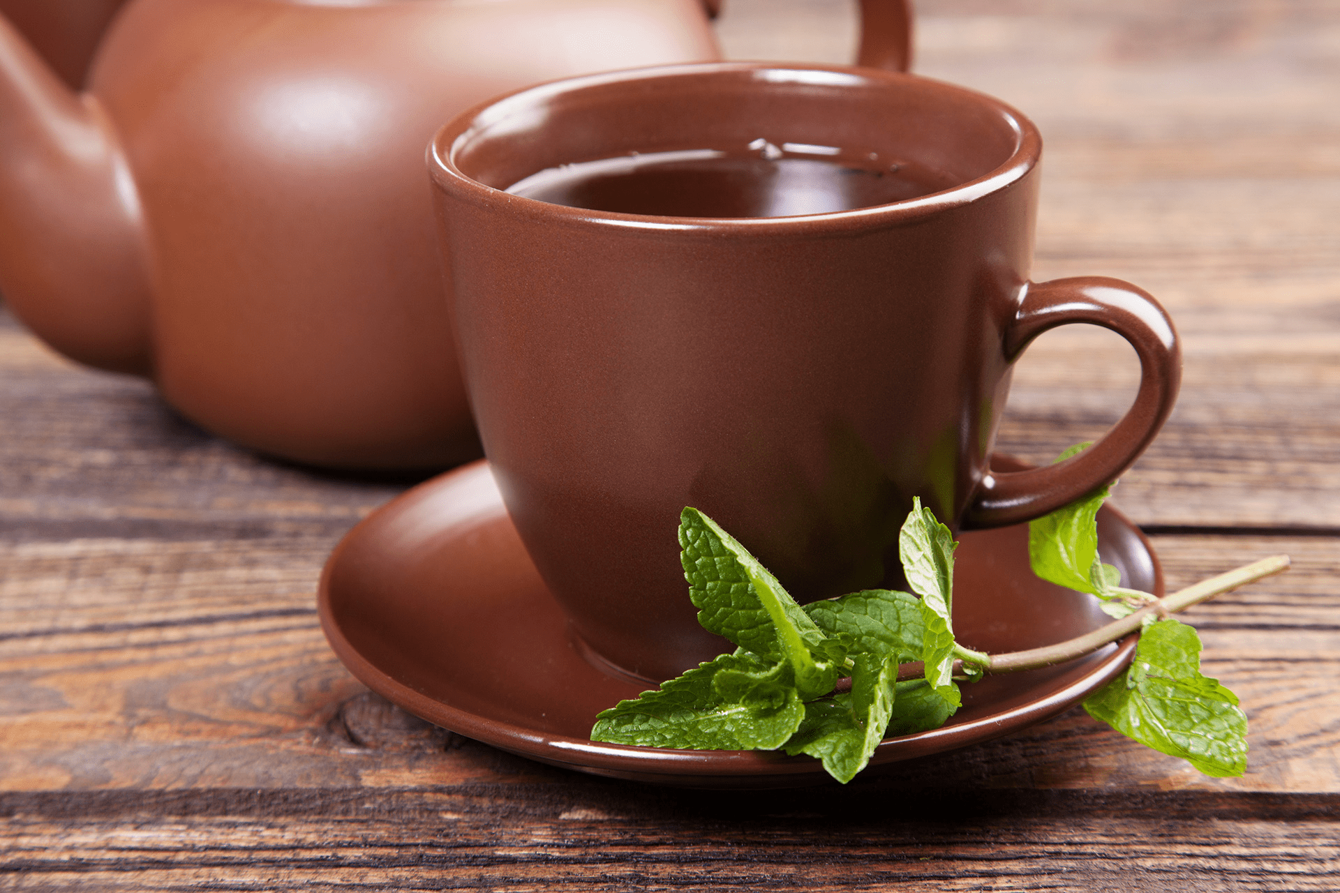 Taza Chocolate Peppermint Tea