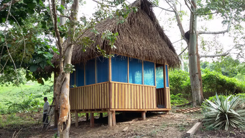 Ampiri jungle hut