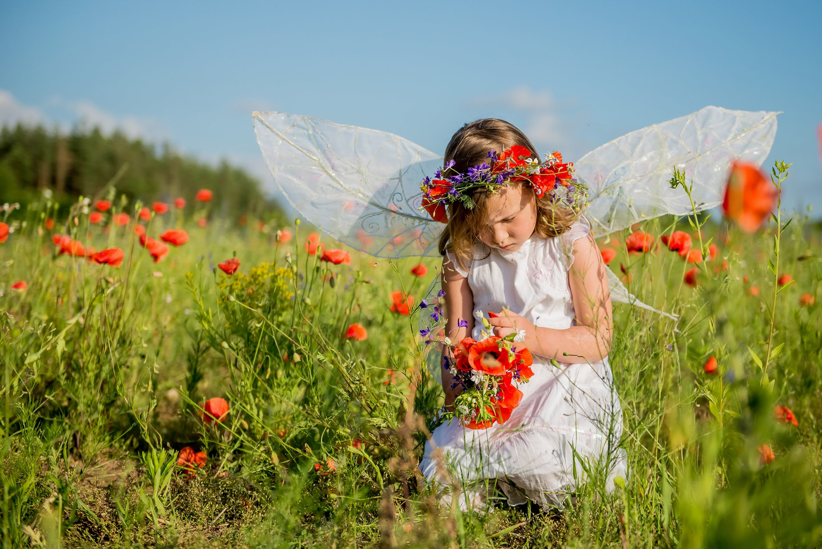 girl with fairy wings picking wildflowers - small