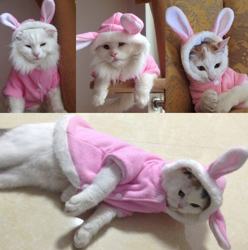 Easter Bunny Dog/Cat Outfit