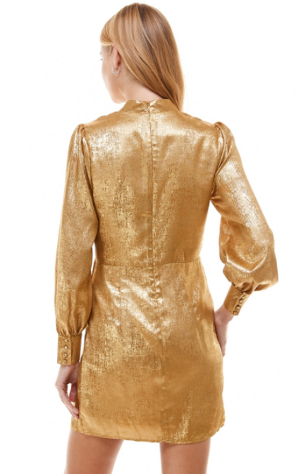 Dripping Gold Dress