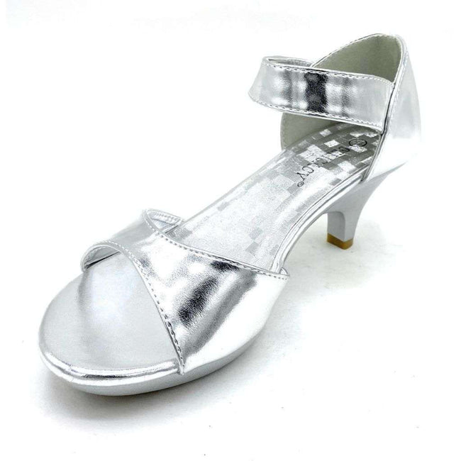 Delicacy Angel-45 Silver Color Heels Shoes for Women