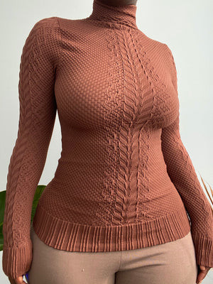 TEXTURED Silhouette Turtle Neck