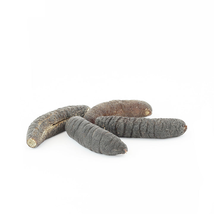 Sand Fish Sea Cucumber (1lb) #509