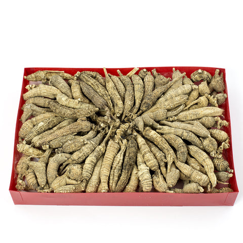 WHF Blue Ridge Mountain American Wild Ginseng Gift Box AAAA(8 oz/Box)