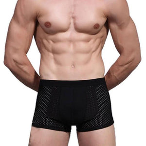 JECKSION Super Deal 2016 Sexy Underwear Bamboo Fiber Shorts Mens Trainers Mesh Boxer Breathable Underpants #LN - shopyes.us