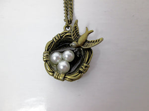three bird eggs in nest bird necklace