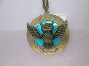 glow in the dark owl locket necklace