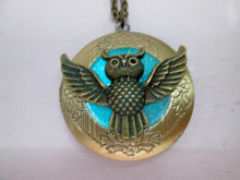 Load image into Gallery viewer, glow in the dark owl locket