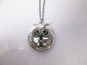 steampunk owl locket