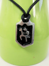 Load image into Gallery viewer, horse riding necklace