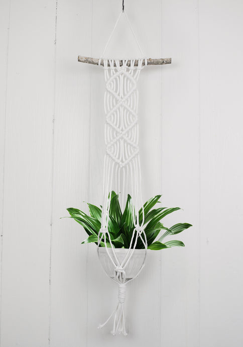 Diamond Macrame Wall Plant Hanging