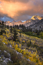 High Sierra Photography Workshop with Josh Cripps & Jim Patterson