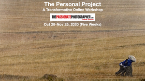 "Sold Out! Dec 2, 2020 Click ""Book Now"" For Waiting List...The Passionate Personal Project: A Transformative 5-Week Online Workshop with Steve Simon"