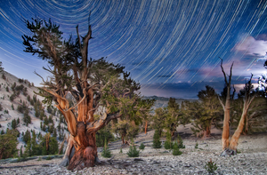 Sold Out! Contact us for more info on next year's workshop. Dark of the Moon - Night Photography Workshop in the Eastern Sierra
