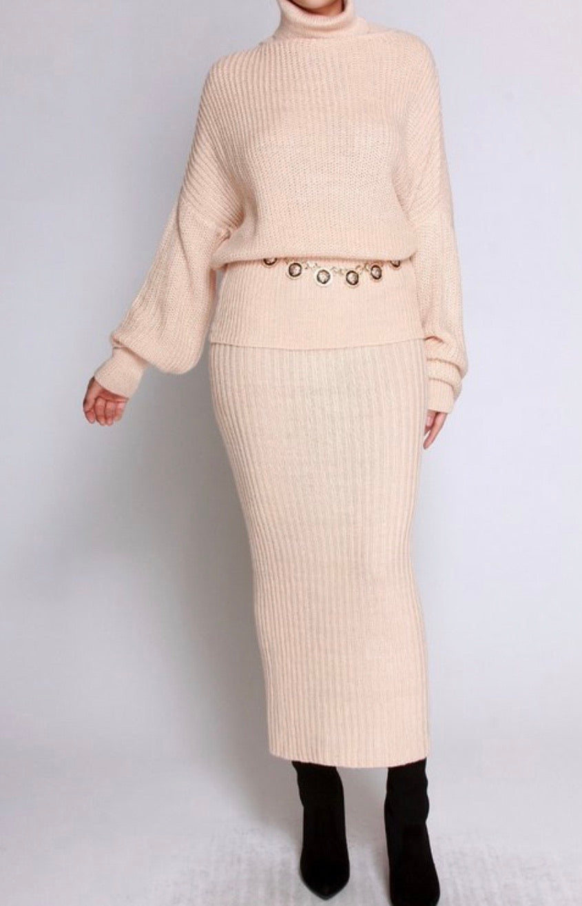 Turtle Neck Sweater and Skirt Set