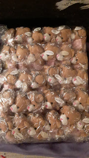 Stuffies bulk pack of 30 - Brown Bear