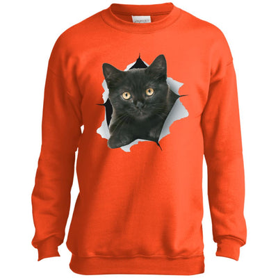 Black Kitten Youth Crewneck Sweatshirt