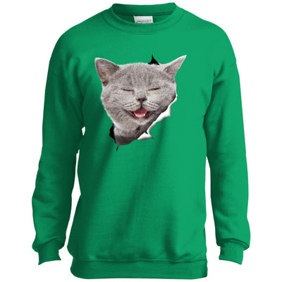 Grey Cat Laughing Youth Crewneck Sweatshirt