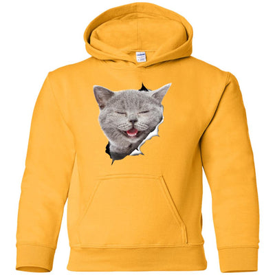 Grey Cat Laughing Youth Pullover Hoodie