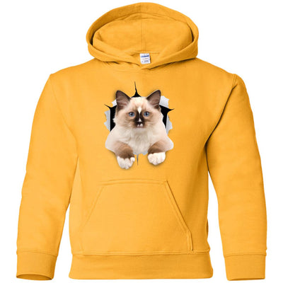 Brown Ragdoll Cat Youth Pullover Hoodie