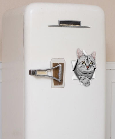Grey Tabby Decals