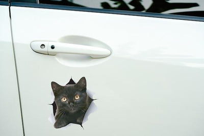 Cute Black Kitten Decals