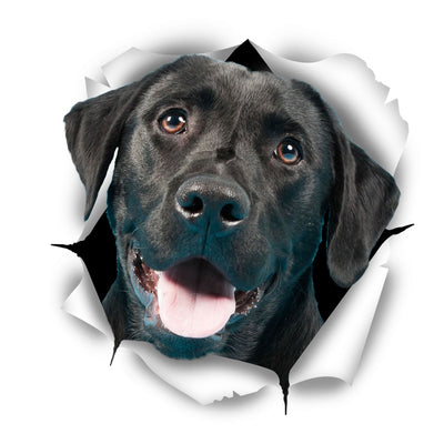 Cute Black Labrador Decals