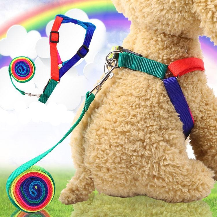 Pet Rainbow Leash