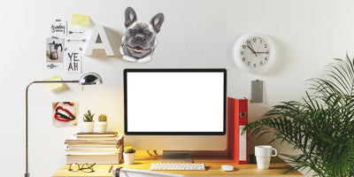 Smiling Frenchie Decals