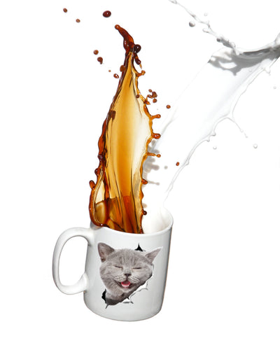 Laughing Grey Cat Mug