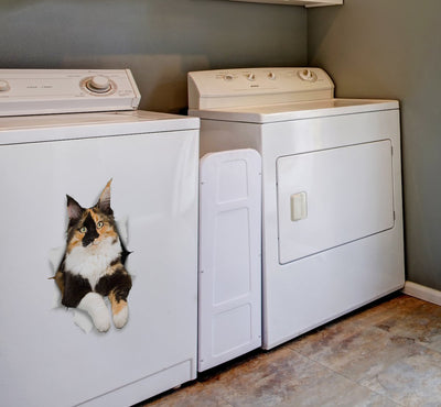Calico Cat Decals