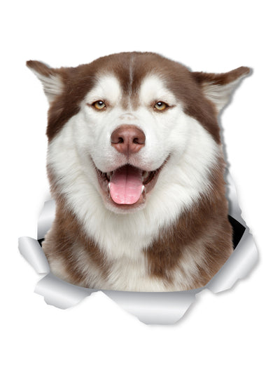 Happy Siberian Husky Decals