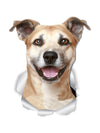 Smiling Staffie Decals