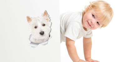 Cute Westie Decals