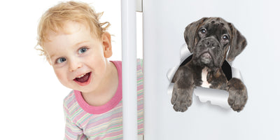 Adorable Boxer Dog Decals