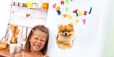 Cute Pomeranian Decals